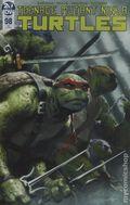 Teenage Mutant Ninja Turtles (2011 IDW) 98FRANKIES