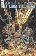 Teenage Mutant Ninja Turtles (2011 IDW) 103RI