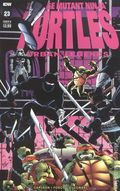 Teenage Mutant Ninja Turtles Urban Legends (2018 IDW) 23B