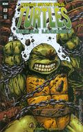 Teenage Mutant Ninja Turtles Urban Legends (2018 IDW) 23RI
