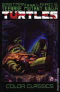 Teenage Mutant Ninja Turtles Color Classics TPB (2018 IDW) 3-1ST