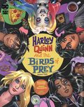 Harley Quinn and The Birds of Prey (2020 DC) 2A