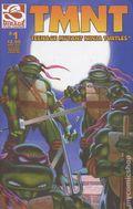 Teenage Mutant Ninja Turtles (2001 Mirage) 1REP