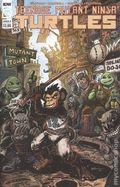 Teenage Mutant Ninja Turtles (2011 IDW) 109B