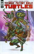 Teenage Mutant Ninja Turtles (2011 IDW) 109RI