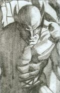 Wolverine (2020 6th Series) 6D