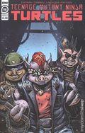 Teenage Mutant Ninja Turtles (2011 IDW) 110B