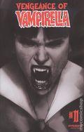 Vengeance of Vampirella (2019 Dynamite) 11G