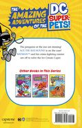 Amazing Adventures of the DC Super Pets! The Ice Cream Caper SC (2020 Capstone) 1-1ST