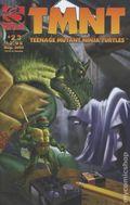 Teenage Mutant Ninja Turtles (2001 Mirage) 23