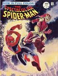 Spectacular Spider-Man (1968 Magazine) 2