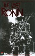 Teenage Mutant Ninja Turtles the Last Ronin (2020 IDW) 1C