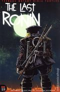 Teenage Mutant Ninja Turtles the Last Ronin (2020 IDW) 1B