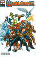 Wolverine (2020 6th Series) 8C