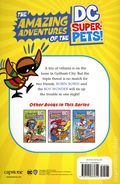 Amazing Adventures of the DC Super Pets! Robin Robin to the Rescue SC (2021 Capstone) 1-1ST