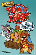 Tom and Jerry The Purr-fect Getaway GN (2021 Capstone) A Wordless Graphic Novel 1-1ST