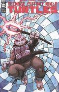 Teenage Mutant Ninja Turtles (2011 IDW) 113B
