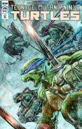 Teenage Mutant Ninja Turtles (2011 IDW) 114RI