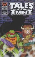 Tales of the Teenage Mutant Ninja Turtles (2004 Mirage) 21