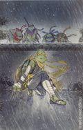 Teenage Mutant Ninja Turtles Jennika (2020 IDW) 3SANCTUM/SLAB