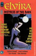 Elvira Mistress of the Dark (1993) 11