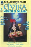 Elvira Mistress of the Dark (1993) 18