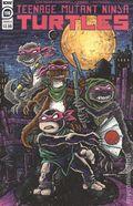Teenage Mutant Ninja Turtles (2011 IDW) 119B