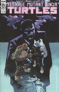 Teenage Mutant Ninja Turtles (2011 IDW) 119A