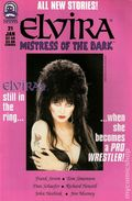 Elvira Mistress of the Dark (1993) 21
