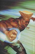 Street Fighter (2003 Image) 4C.JAYCO.Z