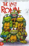 Teenage Mutant Ninja Turtles the Last Ronin (2020 IDW) 1C&P