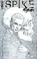 Spike Asylum (2006 IDW) 2C