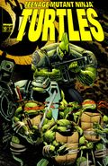 Teenage Mutant Ninja Turtles (1996 Image) 10