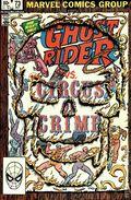 Ghost Rider (1973 1st Series) 73
