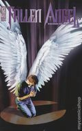 Fallen Angel (2005 2nd Series IDW) 11B