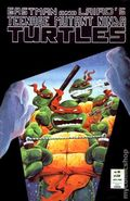 Teenage Mutant Ninja Turtles (1984) 16