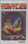 Teenage Mutant Ninja Turtles (1984) 19