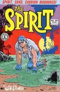 Spirit (1983 Kitchen Sink) 55