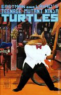 Teenage Mutant Ninja Turtles (1984) 23