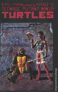 Teenage Mutant Ninja Turtles (1984) 44