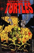 Teenage Mutant Ninja Turtles (1996 Image) 12