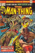 Man-Thing (1974 1st Series) 8
