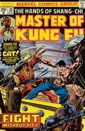 Master of Kung Fu (1974) 39