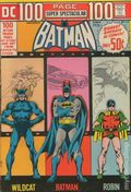 DC 100 Page Super Spectacular (1971) 14