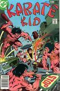 Karate Kid (1976) 11