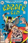 Karate Kid (1976) 6