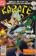 Karate Kid (1976) 8
