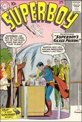 Superboy (1949-1979 1st Series DC) 73