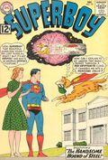 Superboy (1949-1979 1st Series DC) 101