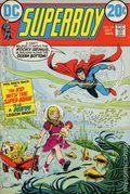 Superboy (1949-1979 1st Series DC) 191